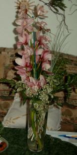 Orchideen2